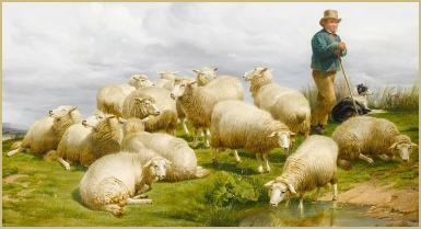 The shepherd at watch